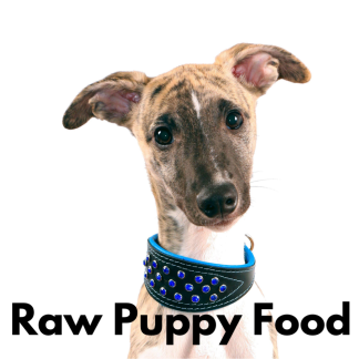 Puppy Raw Food