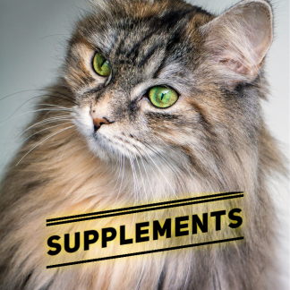 Cat Supplements